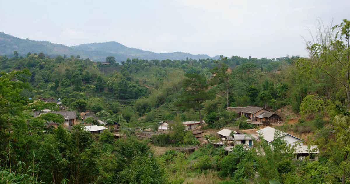 Чайная деревня в горах Наньнуо