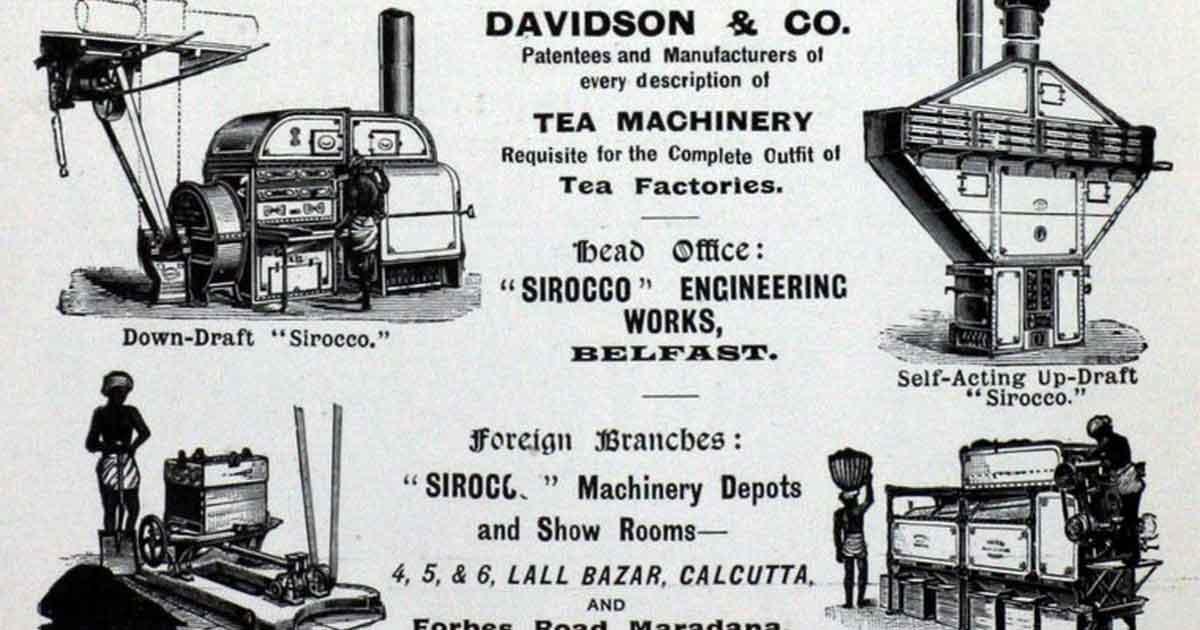 Из всемирной истории чая. Самуэль Клиленд Дэвидсон. Появление чайных машин